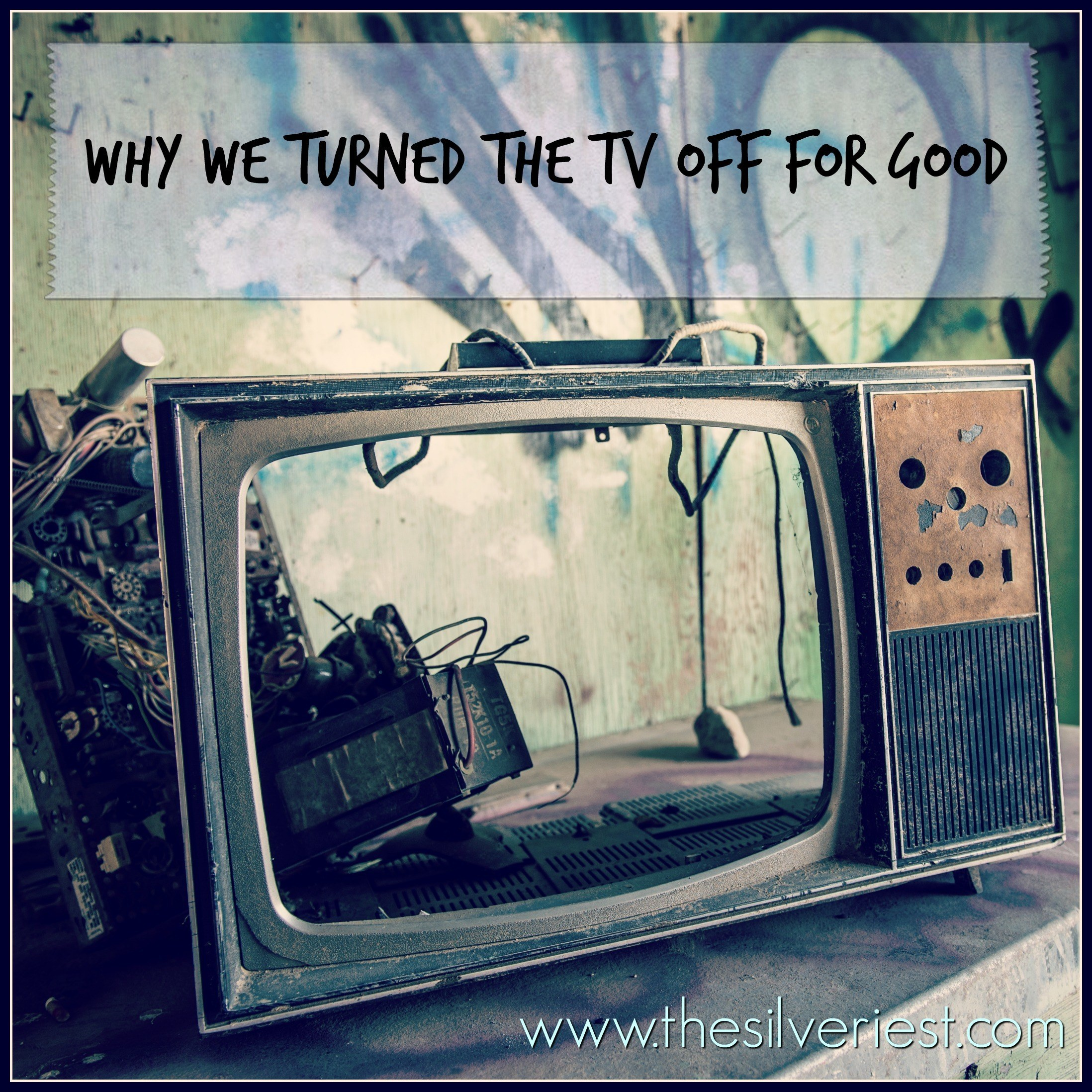 We turned the TV service off in 2010, and haven't looked back (even with preschoolers and toddlers!). Here's why, and why you should consider it too! www.thesilveriest.com