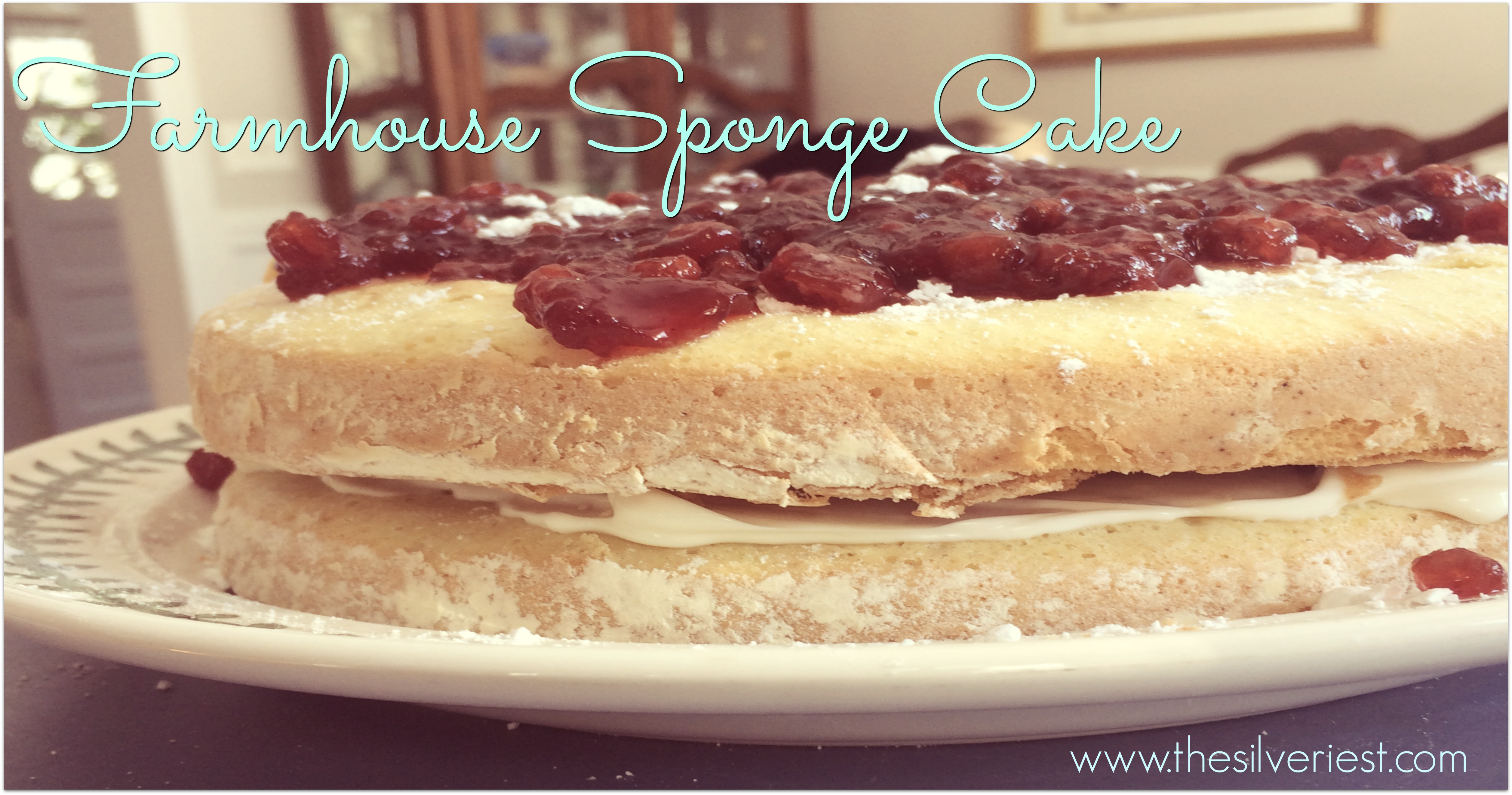 Cake used to be a rare event at our home. This recipe for a simple, delicious, fat-free, light and fluffy Farmhouse Sponge Cake changed everything! www.thesilveriest.com