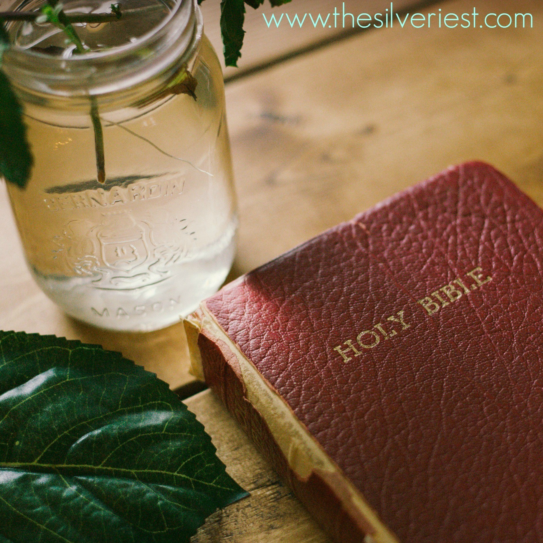 """It can be difficult to discipline, especially if we aren't sure """"what"""" or """"how""""! Join me in learning to discipline based on Scripture. www.thesilveriest.com"""