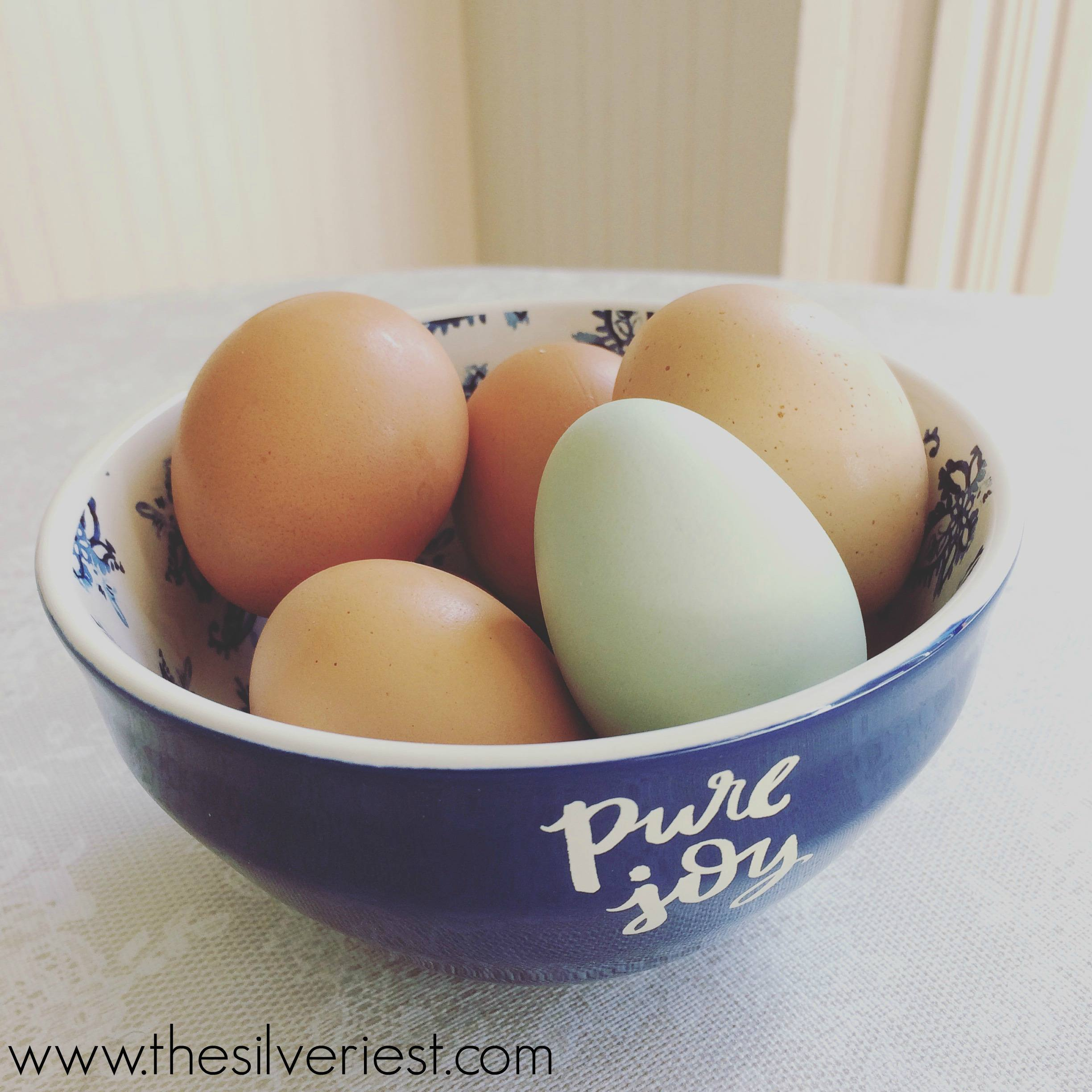 Despite pretty labels in the supermarket egg case, it's not easy to understand what you are buying. This post explains the differences, and why they matter. www.thesilveriest.com