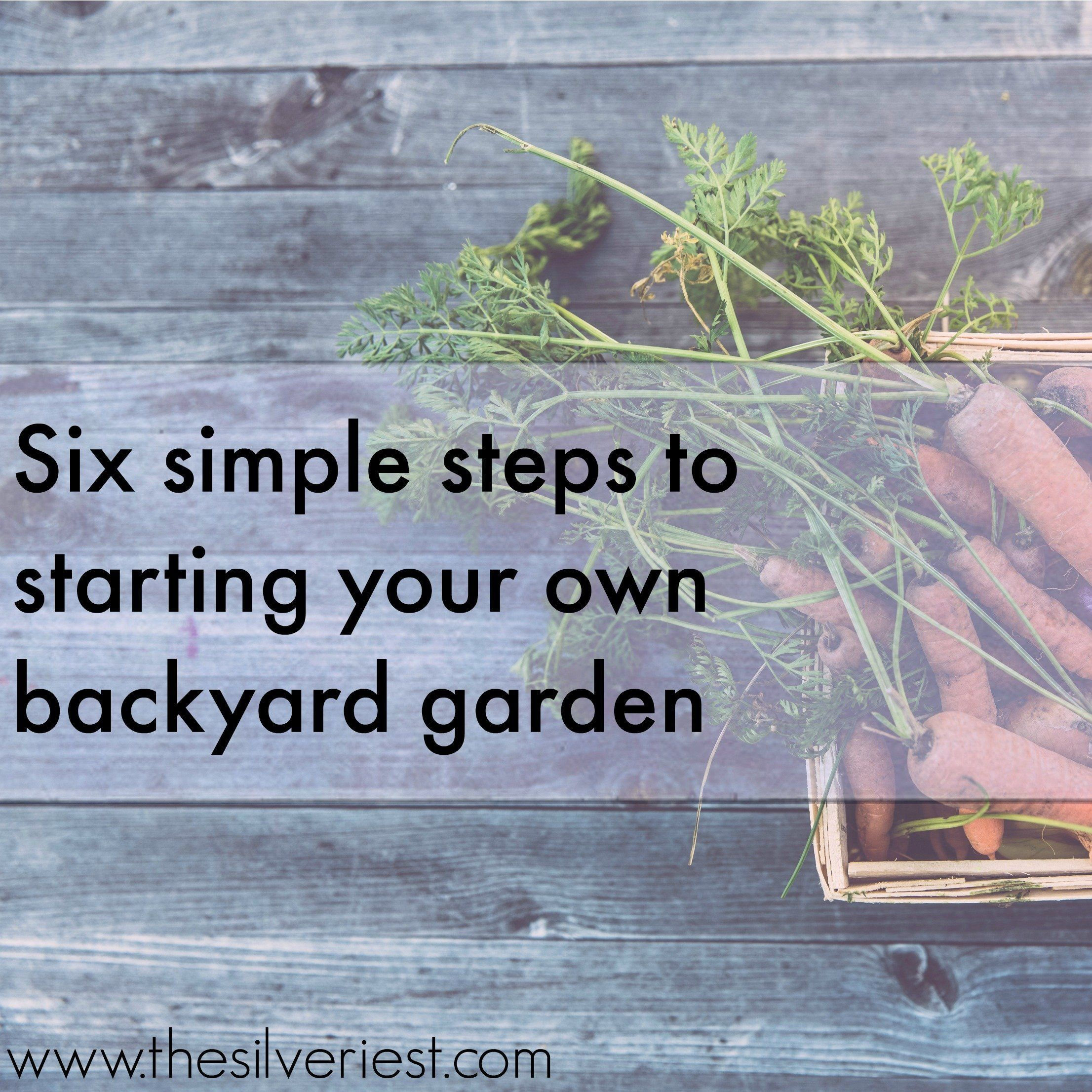 Getting started with a vegetable garden can be so overwhelming! Here is a straightforward overview of six simple steps to start your own backyard garden. www.thesilveriest.com