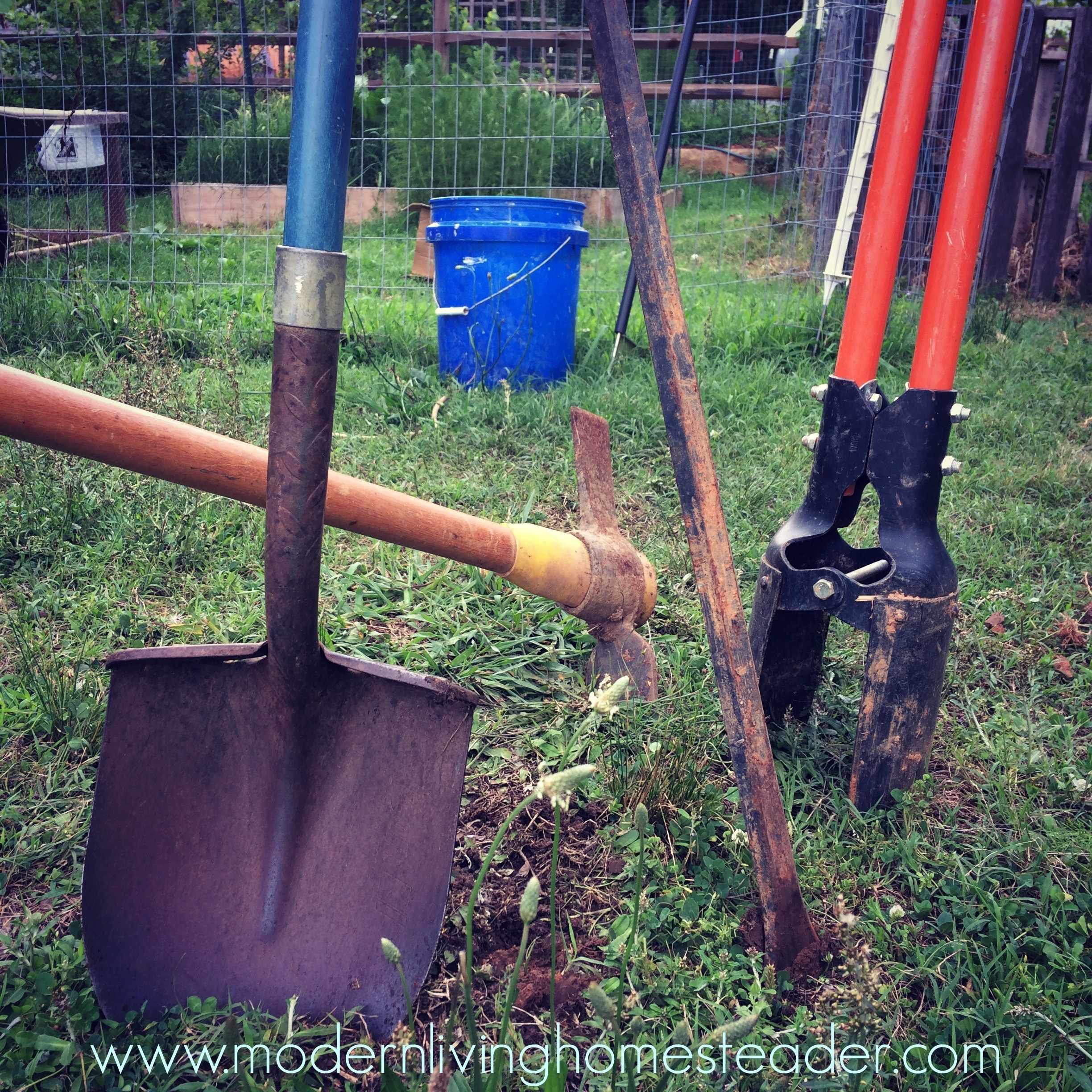 Learn about our favorite tools and products that we use all the time on our homestead. Compare with your own favorites, generate ideas, or buy a gift. www.modernlivinghomesteader.com