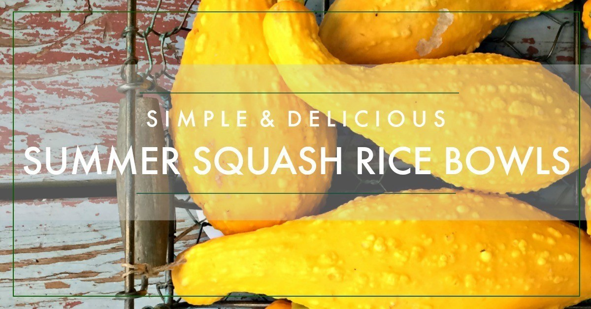 Have an abundance of summer squash? Here's a simple, delicious recipe you can enjoy at breakfast, lunch or dinner! Try this satisfying, light meal today! www.modernlivinghomesteader.com