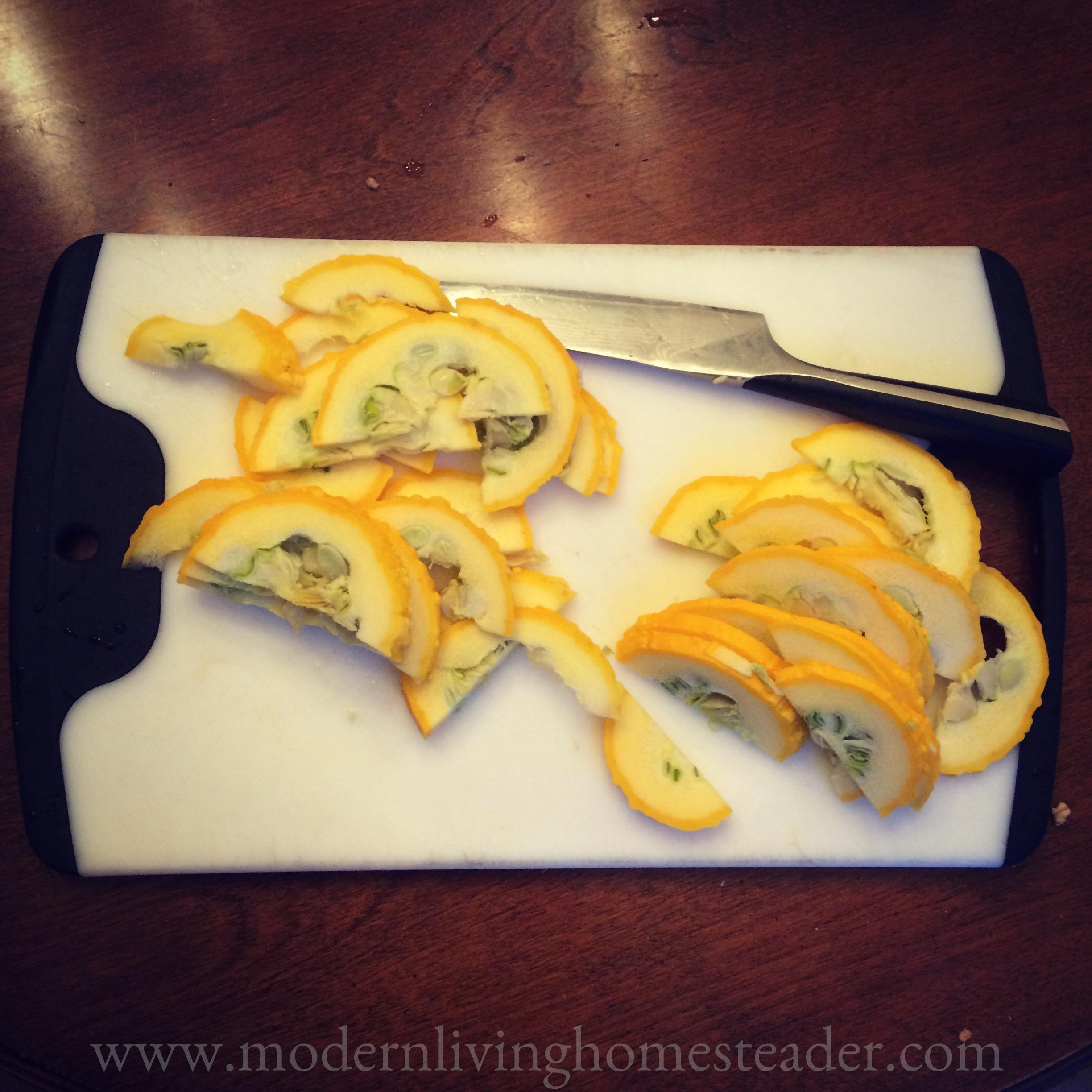 An abundance of summer squash requires creativity and focus! Here's a simple, comforting recipe you can enjoy at breakfast, lunch or dinner! www.modernlivinghomesteader.com