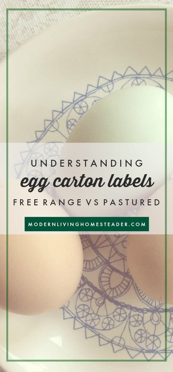 It's hard to understand what all the egg carton labels mean! This post explains free range vs. pasture raised, why they are different, and why it matters. www.modernlivinghomesteader.com