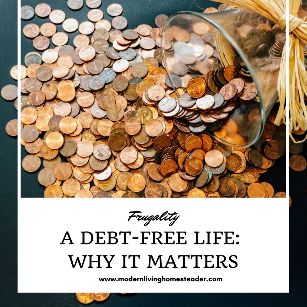If you've ever wondered why paying off your mortgage, student loan, and car debt is important, this post is for you. www.modernlivinghomesteader.com